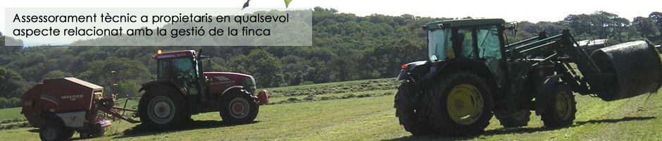 Assessorament de finques