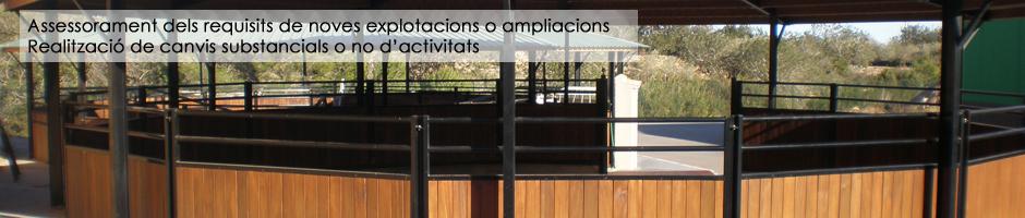 assessorament-requisits-noves-explotacions-ampliacions-equines-cavalls-canvis-substancials-activitats