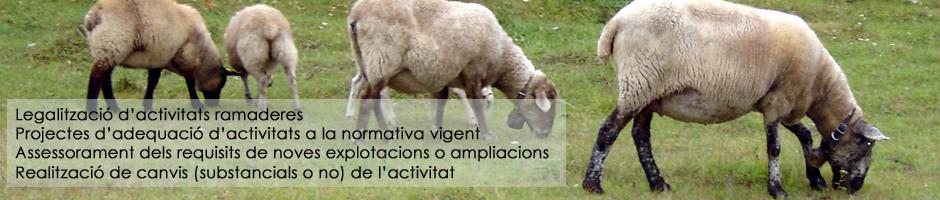 legalitzacio-explotacions-ramaderes-granges-adequcio-activitat-normativa-assessorament-ampliacions-noves-canvis-substancials