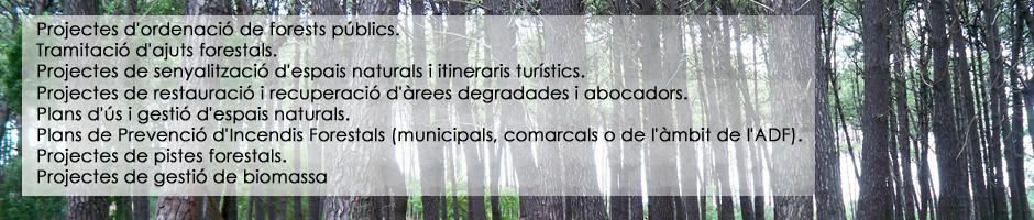 projectes-forests-publics-ajuts-forestals-senyalitzacio-itineraris-turistics-restauracio-abocadors-gestio-espais-naturals-prevencio-incendis-forestals-pistes-camins-biomassa