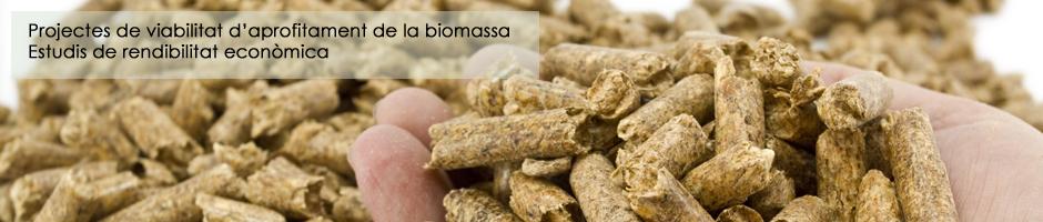 projectes-viabilitat-biomassa-rendibilitat-economica-pellet