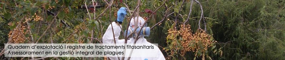 quadern-explotacio-registre-tractaments-fitosanitaris-assessorament-gestio-integral-plagues