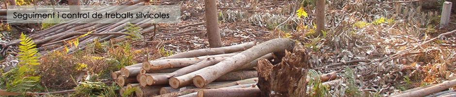 seguiment-control-treballs-silvicoles-bosc-forestal