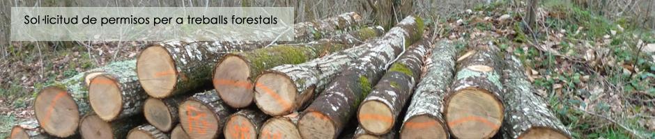 solicitud-permisos-treballs-forestals