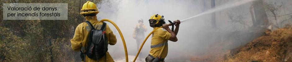 valoracio-danys-incendis-foc-forestal