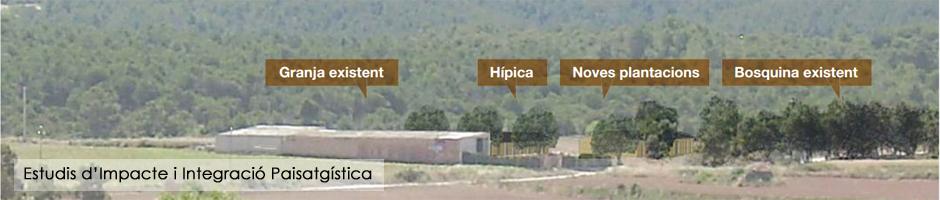 estudis-impacte-integracio-paisatgistica-eiip-eia