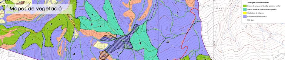 mapes-vegetacio-cartografia-finca-medi-ambient