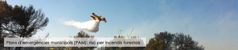 plans-emergencies-municipals-risc-per-incendis-forestals